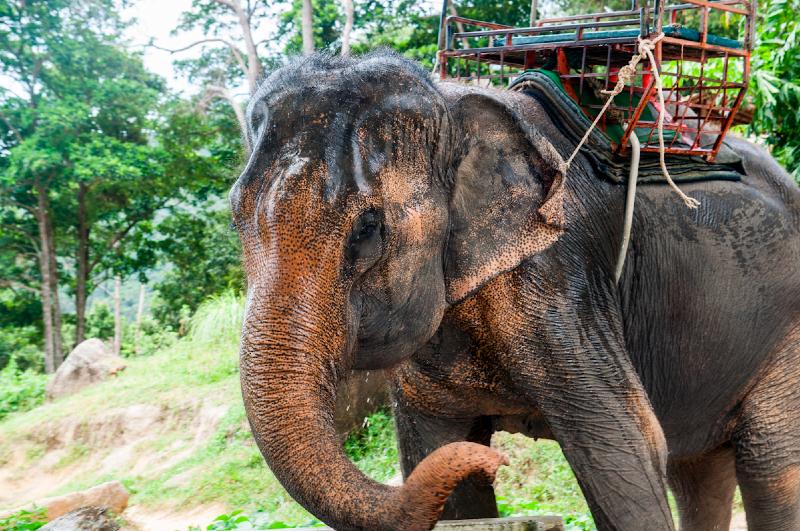 thailand-2013-168