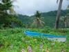 thailand-2013-203