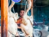 thailand-2013-28