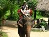 thailand-1134